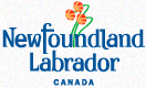 Newfoundland Labrador | Valentia Transatlantic Cable Foundation
